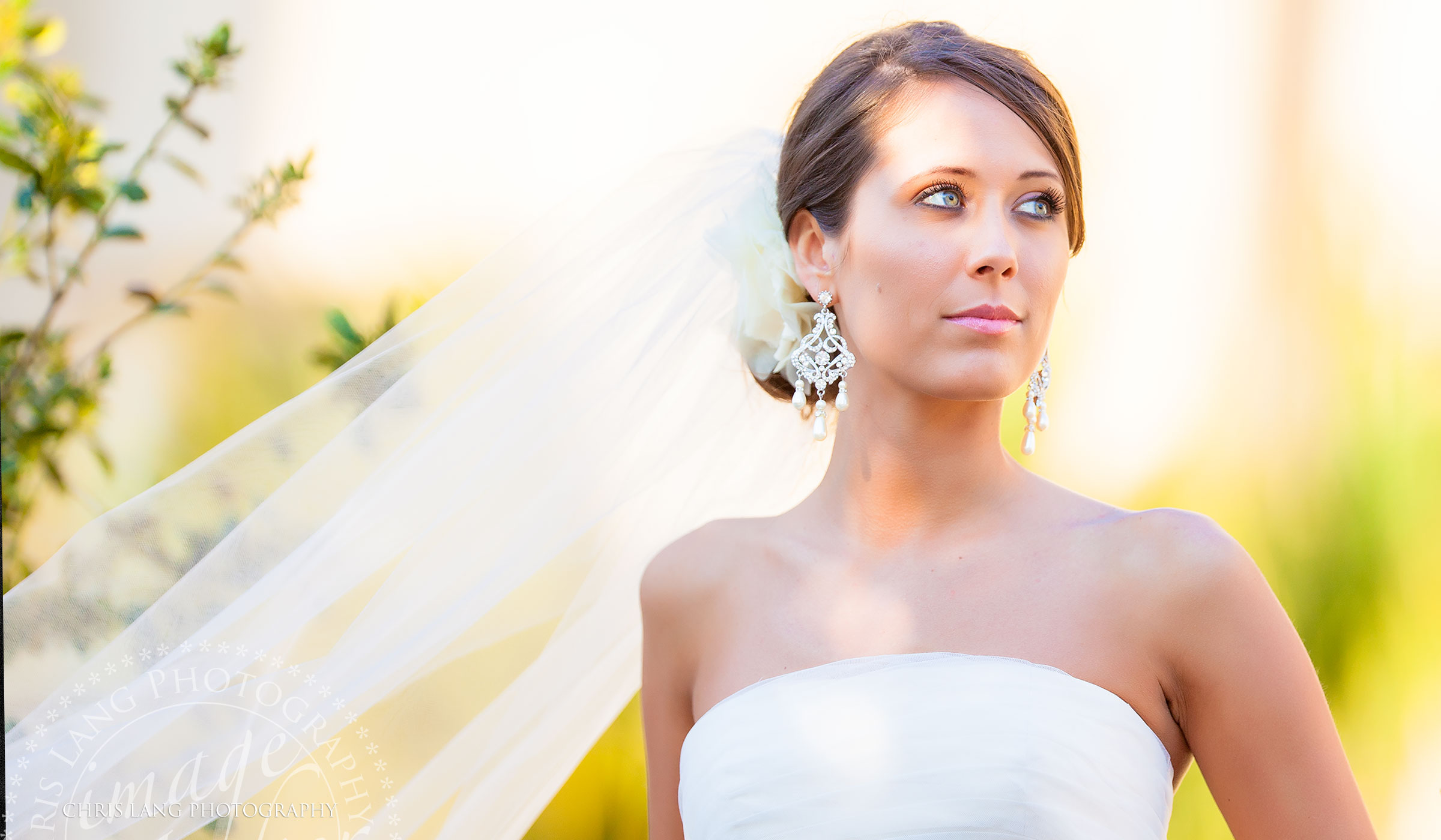 Bridal picture of a stunning bride in her wedding dress at the Arboretum in Wilmington NC Photographer