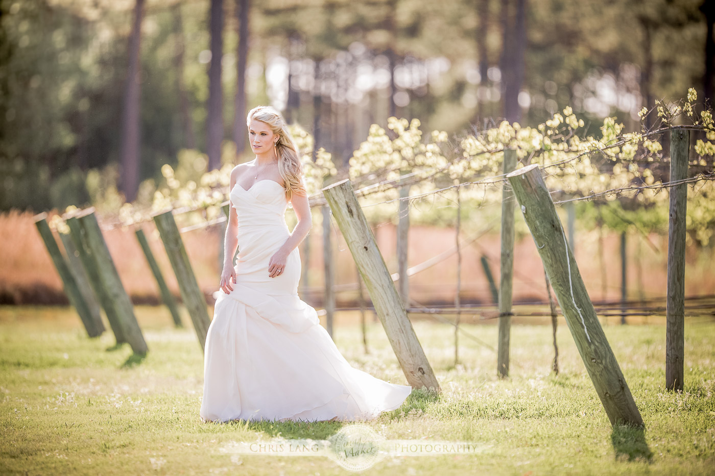Why Every Bride SHould Have A Bridal